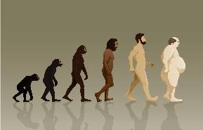 Evolution of Mankind Showing Final Stage With Large Potbelly